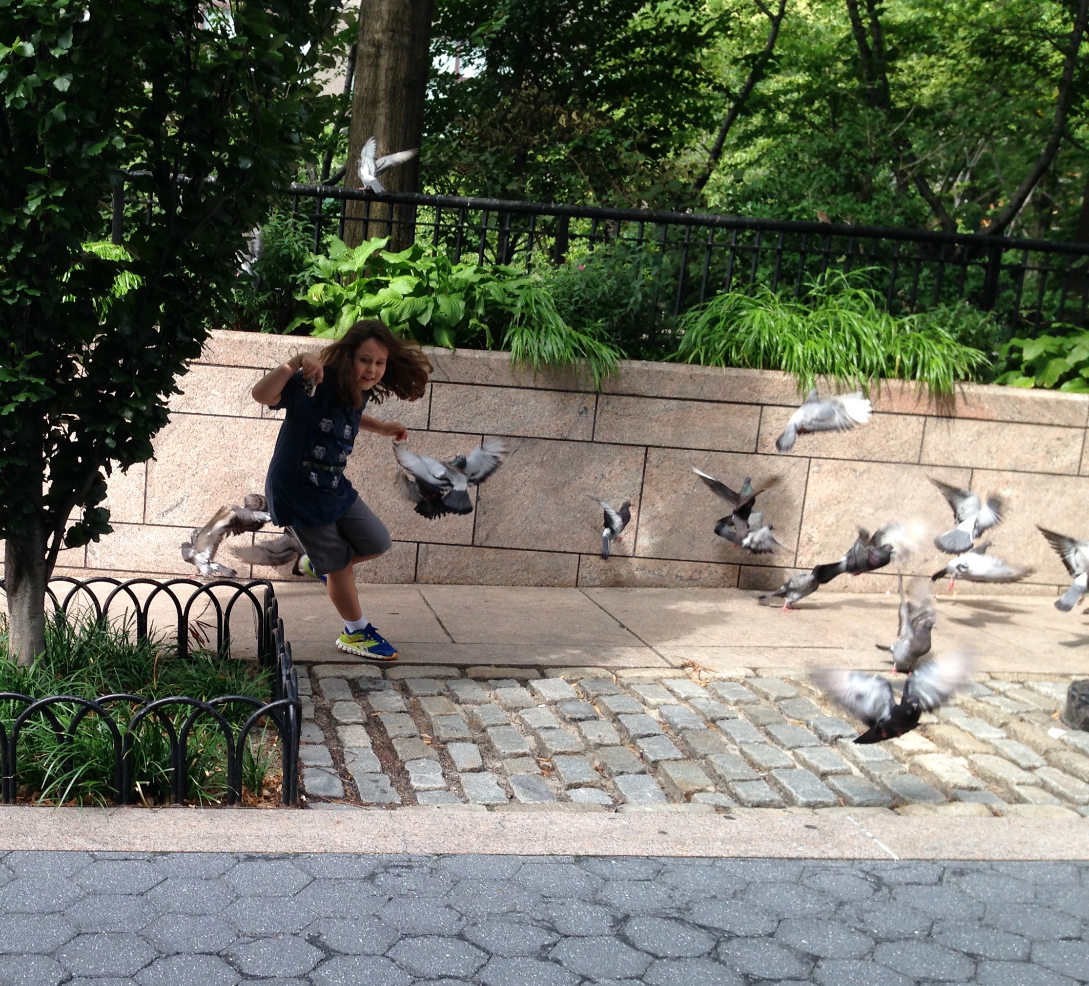 Chasing pigeons in lower Manhattan.
